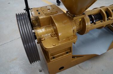 Belt driven of screw oil press