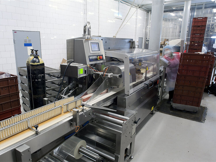 China meat processing machine