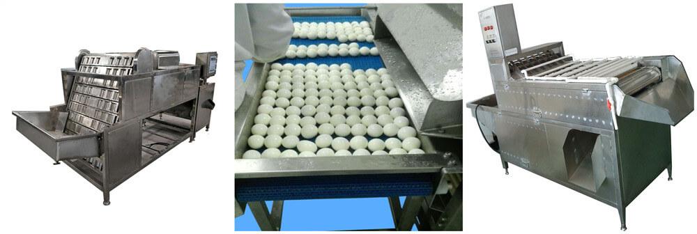 Commercial eggs peeler