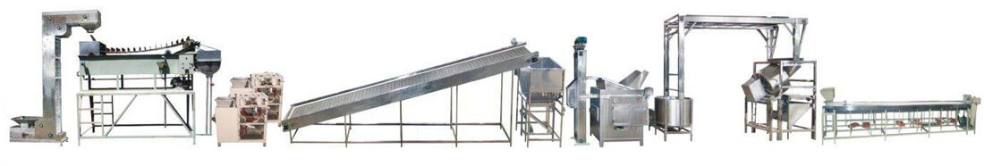 Fried Peanuts Making Line