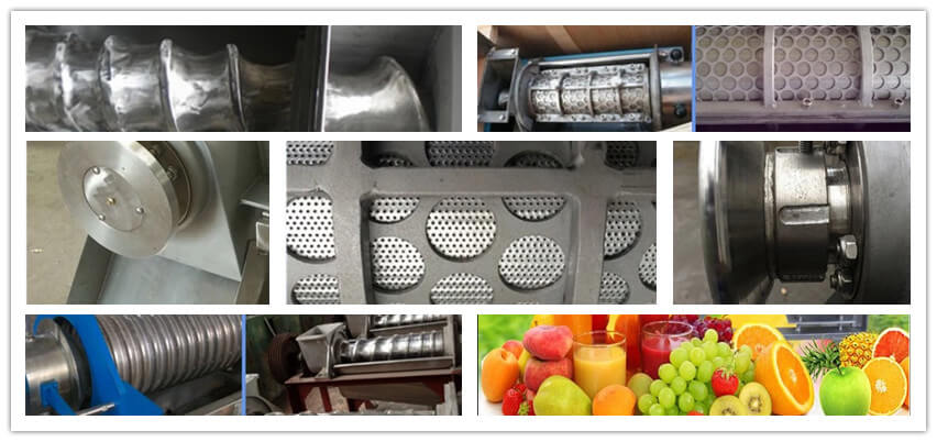Fruit juicer machine details