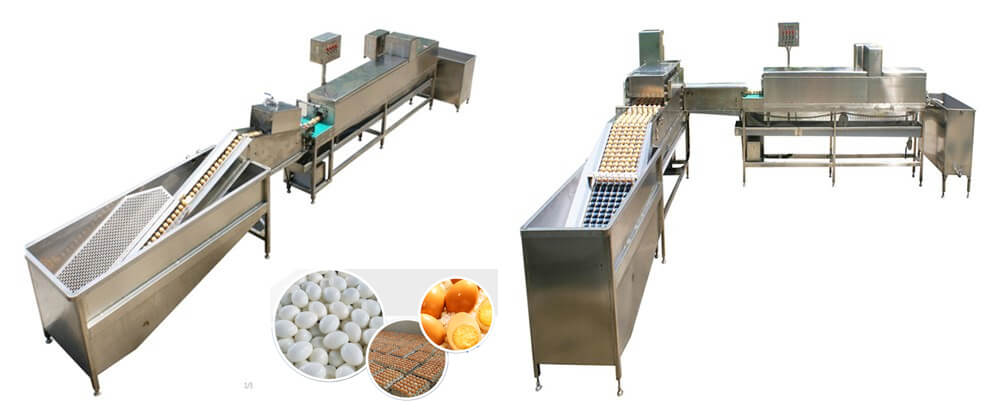 Salted duck chicken egg washing machine