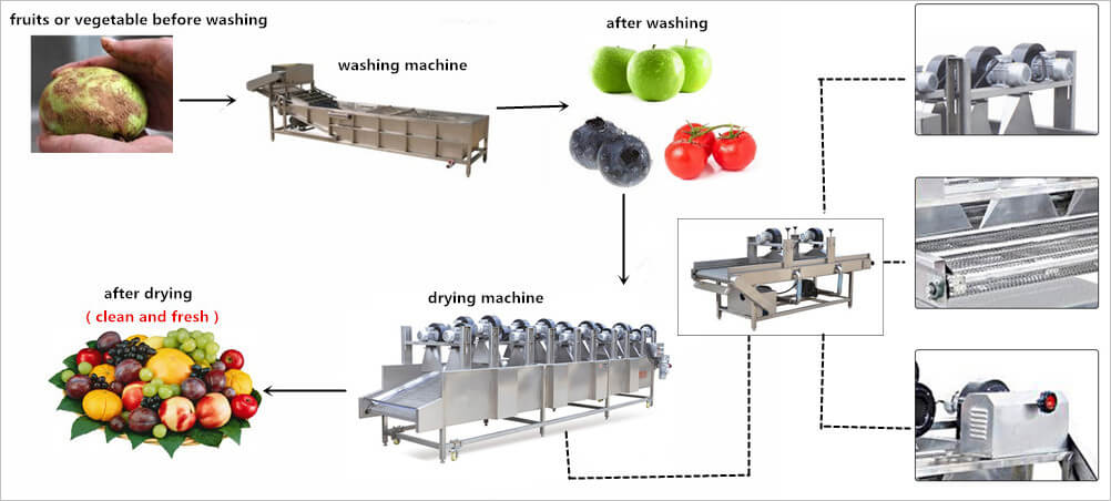 air flow food vegetable dehydrator drying machine