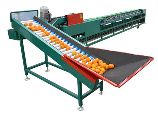 automatic fruit and vegetable sorting machine