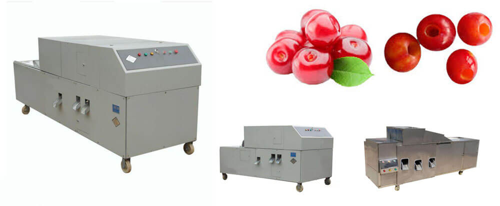 cherry kernel removal machine for sale