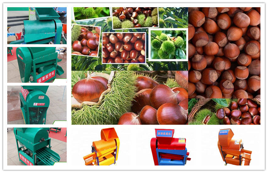 chestnut thorn shell removing machine for shelling stab shells