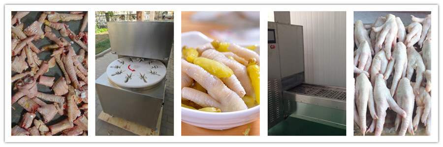 chicken feet cutting machine application