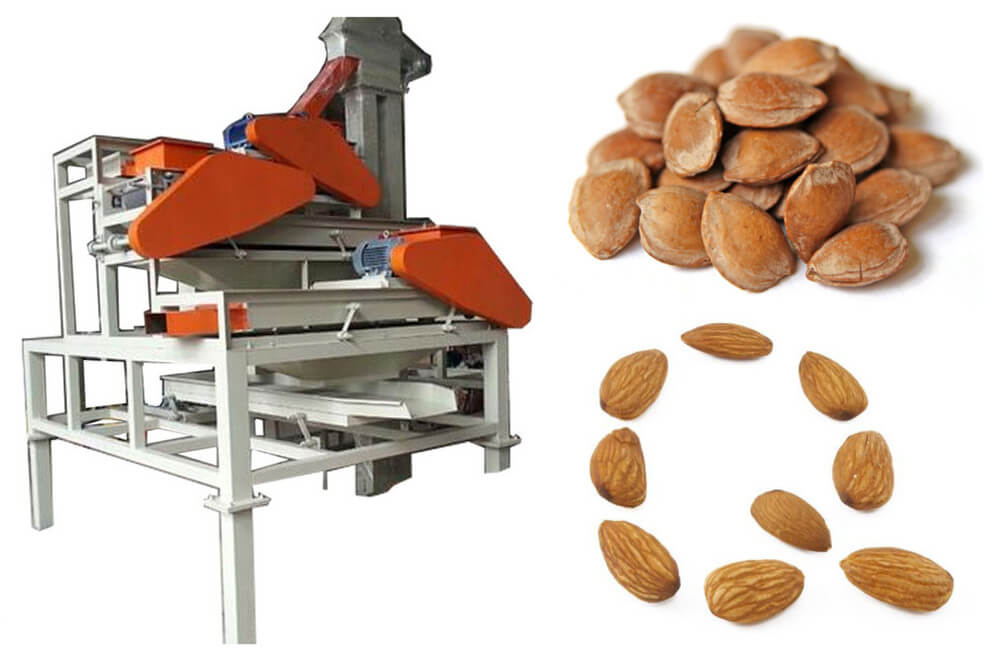 factory price almond shelling machine