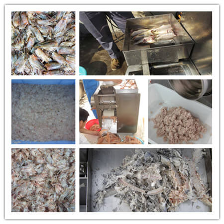 fish bone remover machine applications
