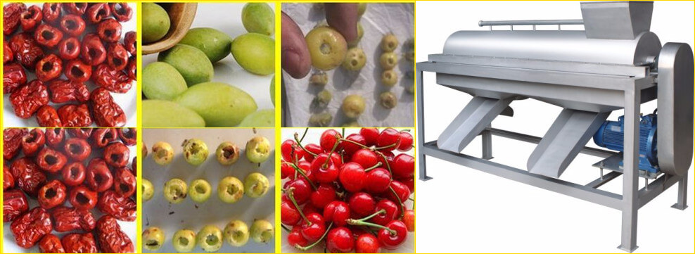 fruit stone removing machine