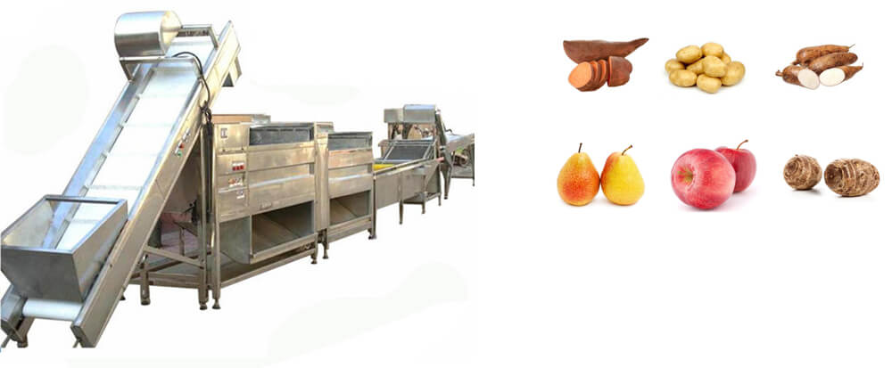 fruit vegetable processing line