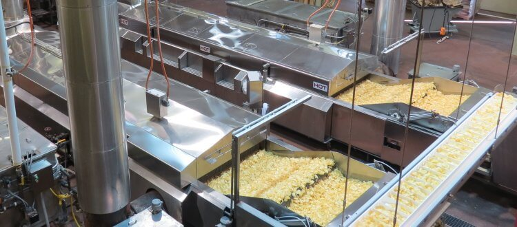 industrial fried chips making business