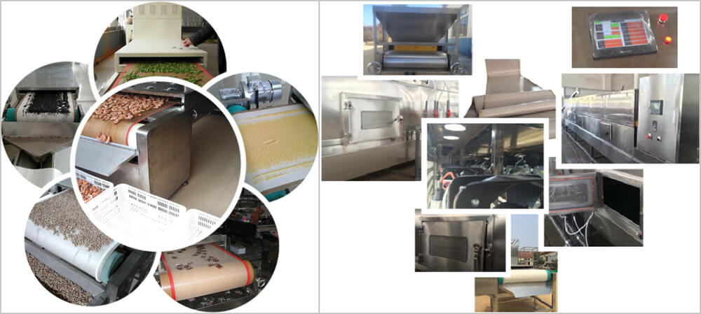 microwave fruit dryer machine application and features