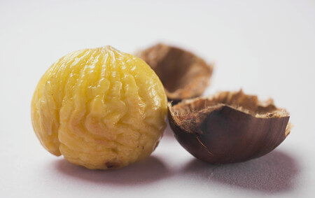 nutrient of chestnut