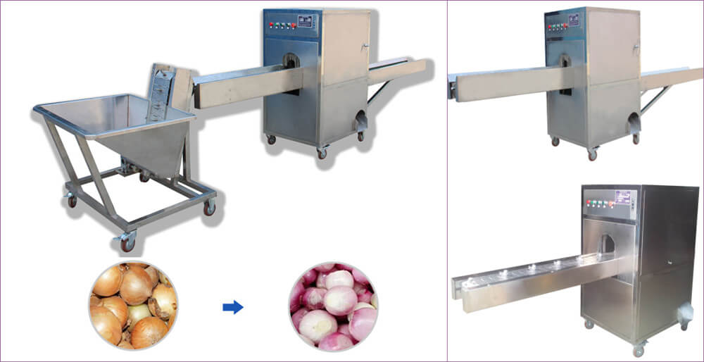onion top and tails cutter machine