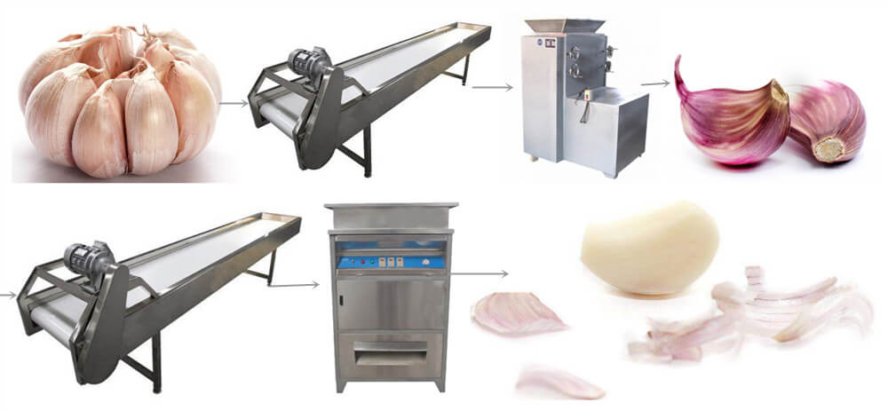 peeled garlic processing procedure