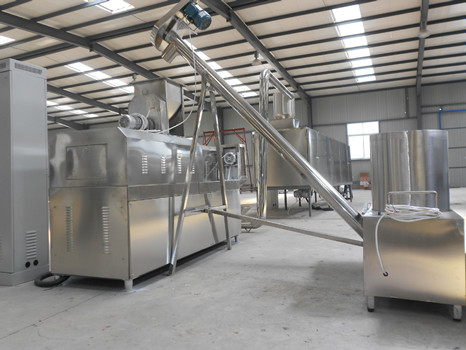 snack food processing equipment