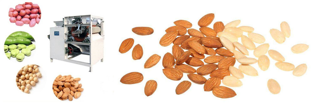 wet type almond bean peanut peeling machine